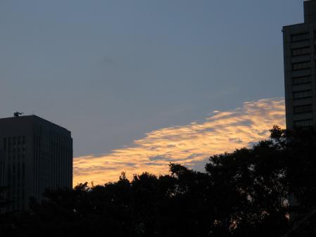 10月の日比谷午後5時