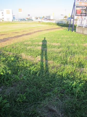 足が長い人と田んぼ