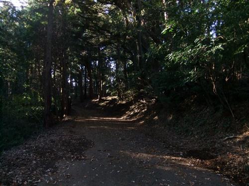 2013.11.30 山の落ち葉集め(御嶽神社参道) 019 (1)