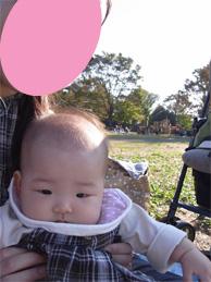 昭和記念公園だよ~