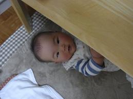 テーブルの下は楽しいの??