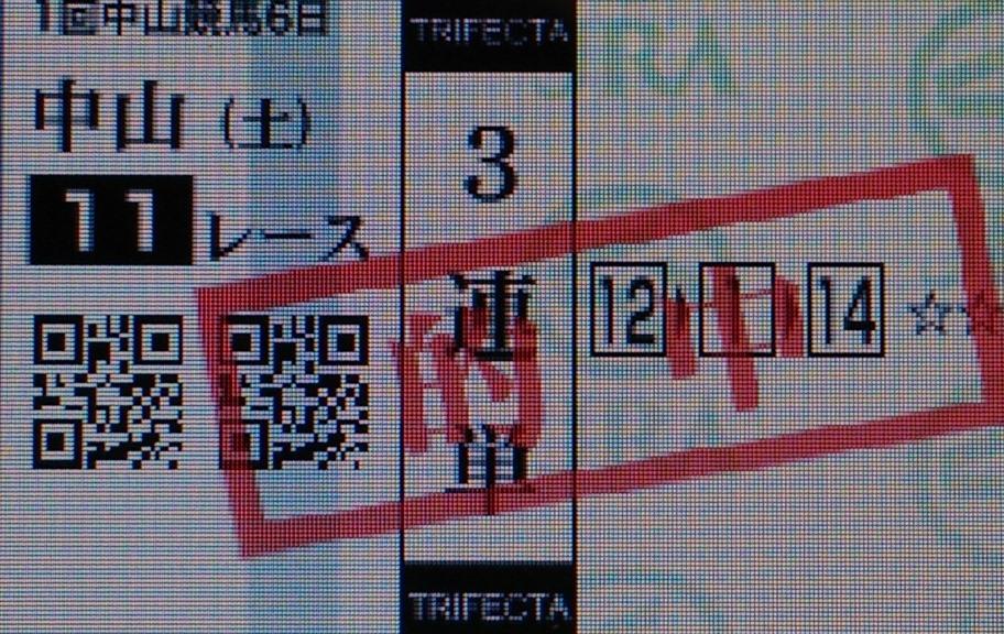 DSC_0004_20140119081248c60.jpg