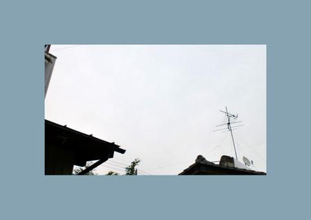 2011-06-15.jpg