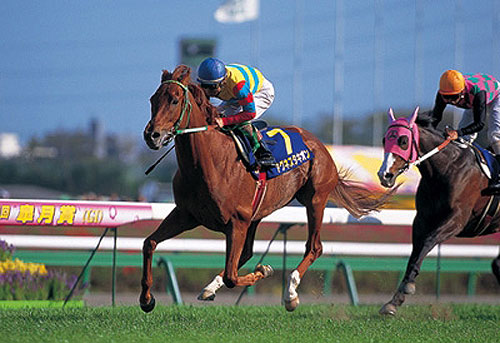 アグネスタキオンが史上最強馬だという風潮