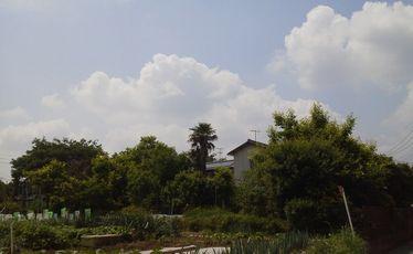 jimoto.jpg