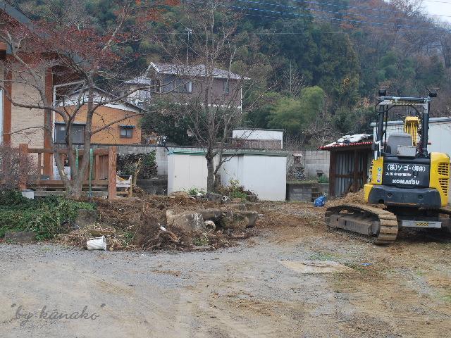 8_20110112125524.jpg