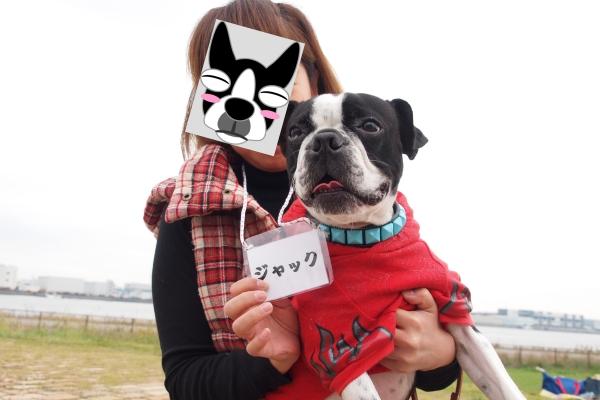 関西ボステリ倶楽部 2010秋 022_edited-1
