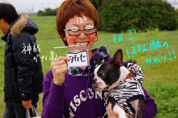 関西ボステリ倶楽部2010秋2 050_edited-1