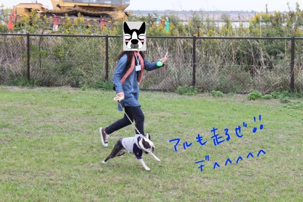 関西ボステリ倶楽部 2010秋 079_edited-1