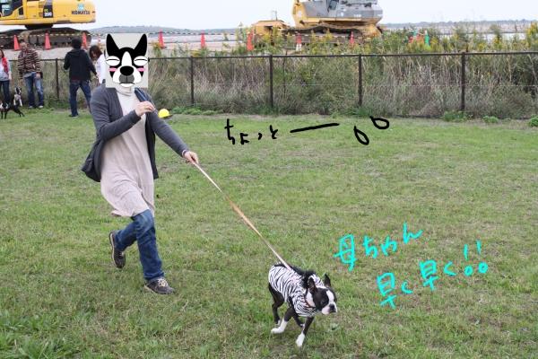 関西ボステリ倶楽部 2010秋 074_edited-1