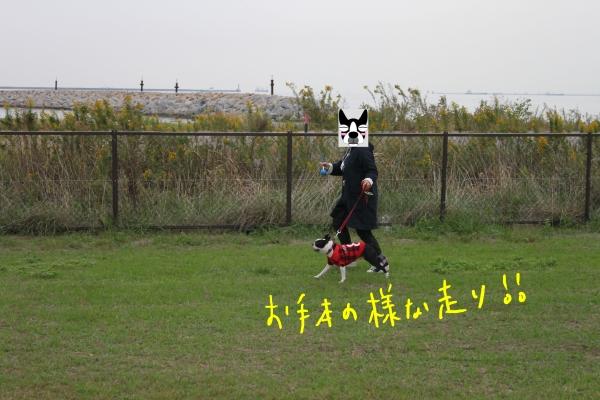 関西ボステリ倶楽部 2010秋 082_edited-1