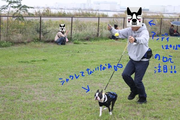 関西ボステリ倶楽部 2010秋 084_edited-1