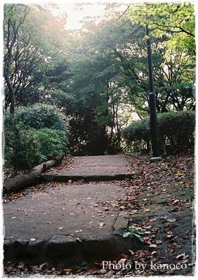 公園階段補正なし