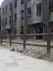 大久野島201011-20
