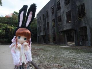 大久野島201011-23