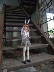 大久野島201011-29