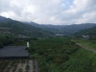 台湾旅行2010-01-47