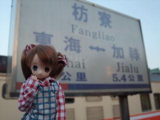 台湾旅行2010-01-50