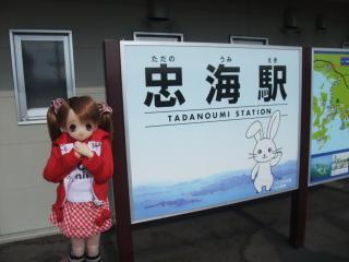 うさぎ島2011-01-05