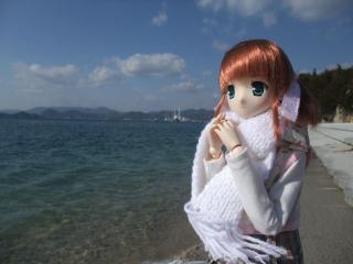 うさぎ島2011-01-21