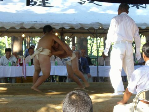 学童相撲 5