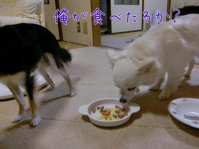 食べたろか?