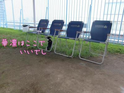 CIMG4544_convert_20100816213200.jpg