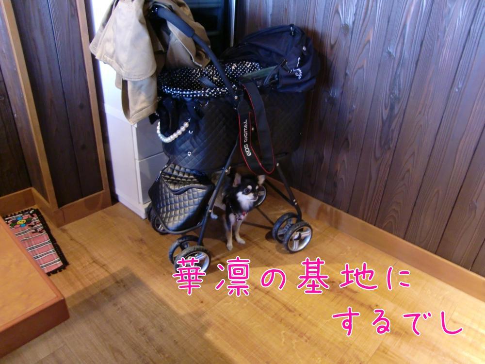 CIMG7720_convert_20101213172504.jpg