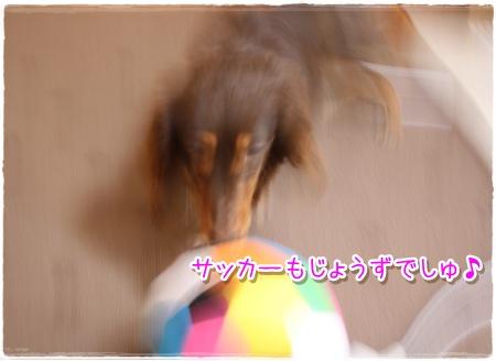 IMG6933.jpg
