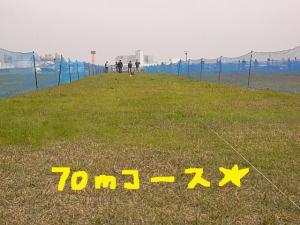 gr4.jpg