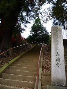 この階段を上り詰めたら。。