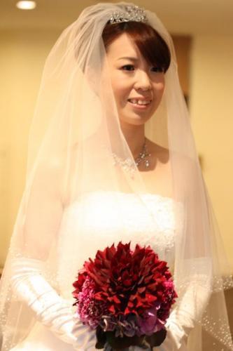 2011.5.29ダリア②