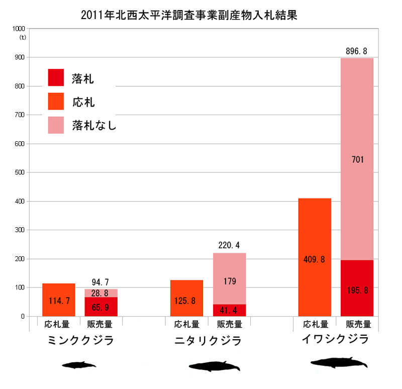 2011年JARPNII副産物入札販売結果