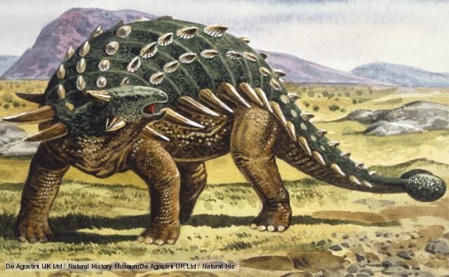 アンキロサウルス02