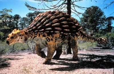 アンキロサウルス03