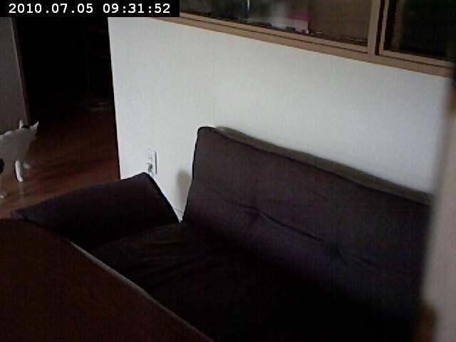 motion-2010-07-05-09-31-52.jpg