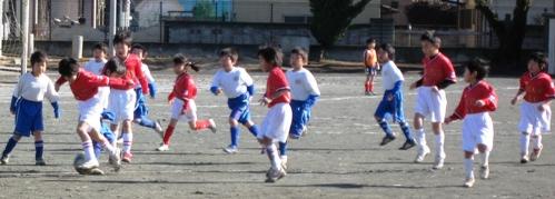 2011,02-13 (07)