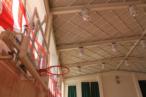 河内小屋内運動場:天井