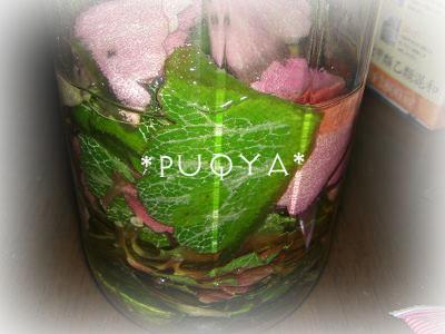 olive×yukinosita