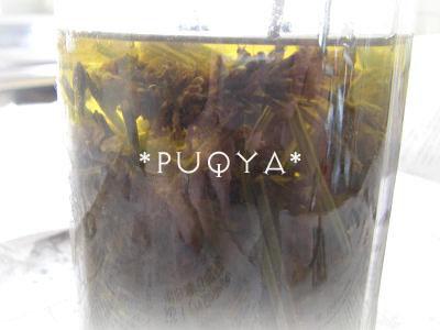 fura-yuno1.jpg