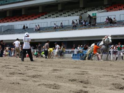 120708川崎競馬オープンデー ばんばと綱引き