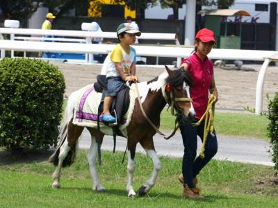120708川崎競馬オープンデー ポニー乗馬1