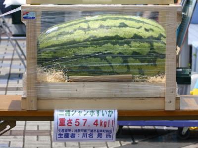 120708川崎競馬オープンデー 三浦産巨大すいか