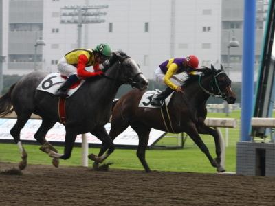 120706川崎03R2歳新馬優勝ヒカリワールド