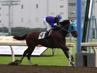 120706川崎02R2歳新馬優勝ブルーアジュデー