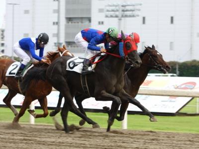 120615川崎02R2歳新馬優勝ブルーヒストリー