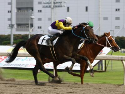 120615川崎01R2歳新馬優勝ドリームキングダム