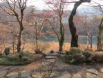 神流川が美しい 対岸は天神山公園?