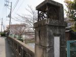 八千代橋そばのサクラ