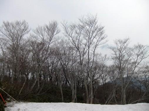 20120520-17.jpg